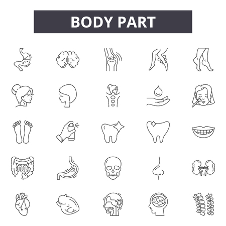 Body part line icons, signs set, vector. Body part outline concept illustration: human,body,anatomy,nose,eye,health,hand,care