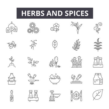 Herbs and spices line icons, signs set, vector. Herbs and spices outline concept illustration: cooking,spice,rosemary,food,garlic,ginger,leaf