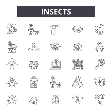 Insects line icons, signs set, vector. Insects outline concept illustration: bug,black,insect,spider,beetle,fly,ant Ilustracja