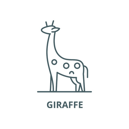 Giraffe vector line icon, outline concept, linear sign