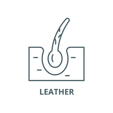 Leather vector line icon, outline concept, linear sign