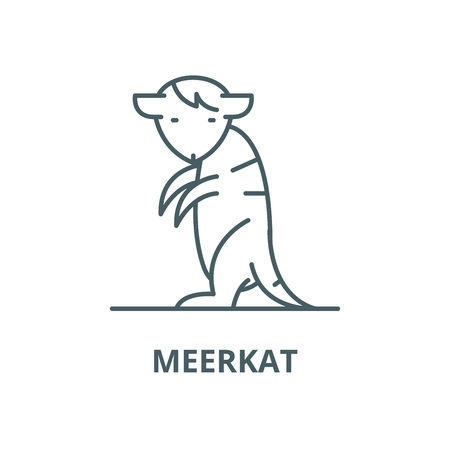 Meerkat vector line icon, outline concept, linear sign