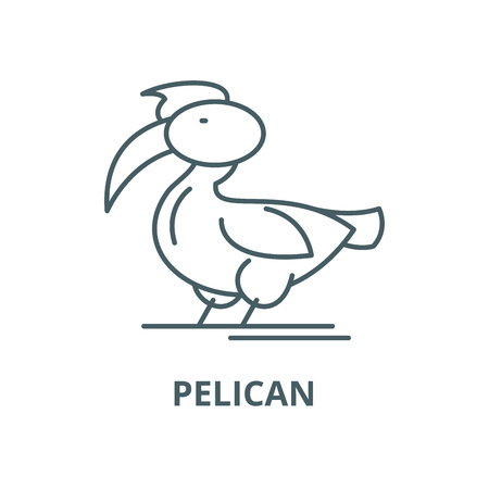Pelican vector line icon, outline concept, linear sign Illustration