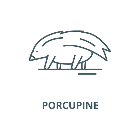 Porcupine vector line icon, outline concept, linear sign