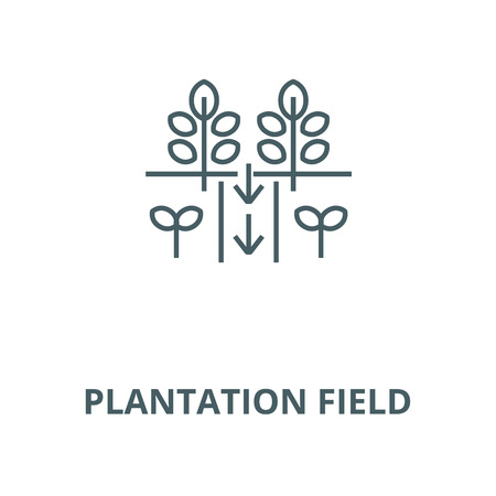 Plantation field vector line icon, outline concept, linear sign 일러스트