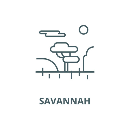 Savannah vector line icon, outline concept, linear sign