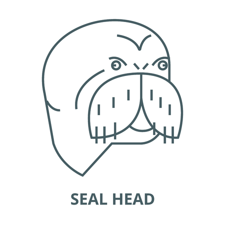 Seal head vector line icon, outline concept, linear sign