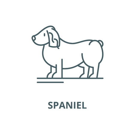 Spaniel vector line icon, outline concept, linear sign