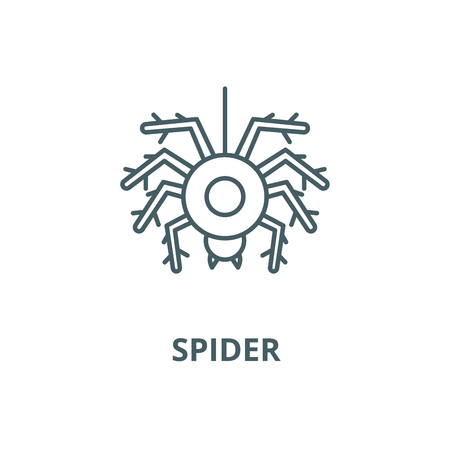 Spider vector line icon, outline concept, linear sign Illustration