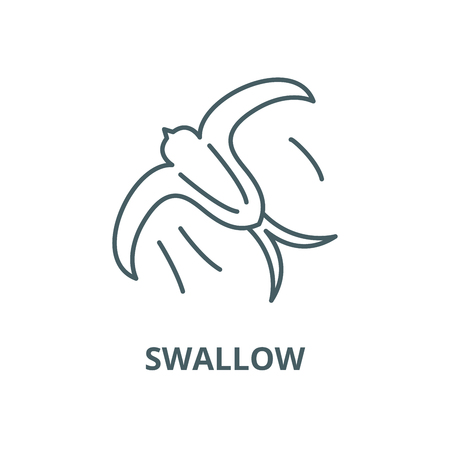 Swallow vector line icon, outline concept, linear sign