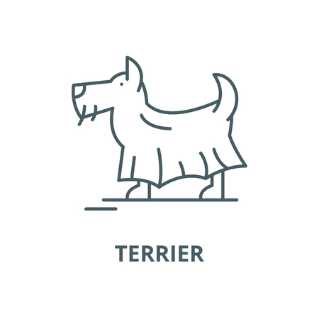 Terrier vector line icon, outline concept, linear sign