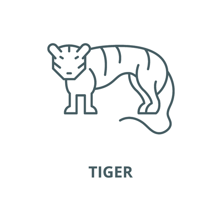 Tiger vector line icon, outline concept, linear sign Illustration
