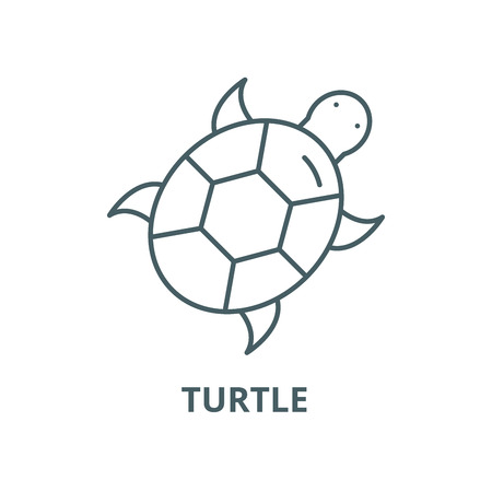 Turtle vector line icon, outline concept, linear sign