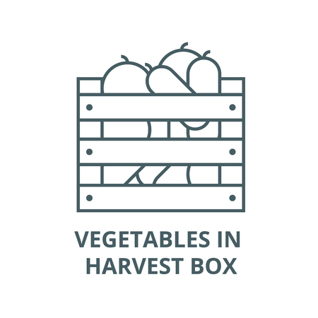 Vegetables in harvest box vector line icon, outline concept, linear sign Banque d'images - 122415425