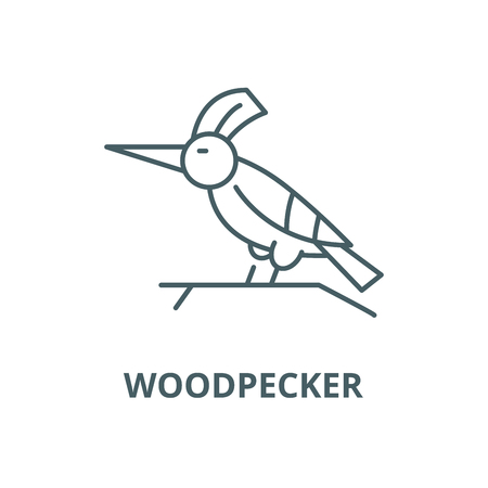 Woodpecker vector line icon, outline concept, linear sign