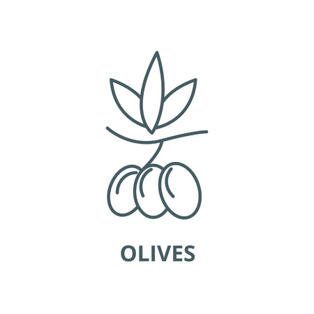 Olives vector line icon, outline concept, linear sign