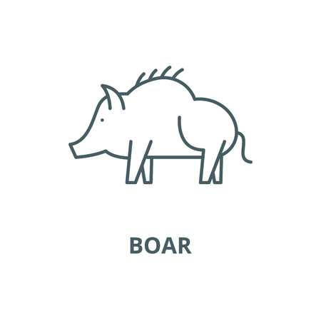 Boar vector line icon, outline concept, linear sign