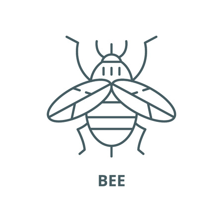 Bee vector line icon, outline concept, linear sign Иллюстрация
