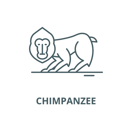 Chimpanzee vector line icon, outline concept, linear sign