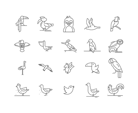 Icônes de ligne d'oiseaux, signes linéaires, ensemble de vecteurs, illustration de concept de contour