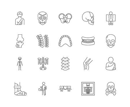 Bone line icons, linear signs, vector set, outline concept illustration Illustration