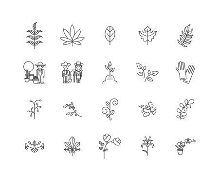 Herbalist line icons, linear signs, vector set, outline concept illustration