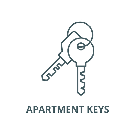 Apartment keys vector line icon, linear concept, outline sign, symbol Stok Fotoğraf - 123309387