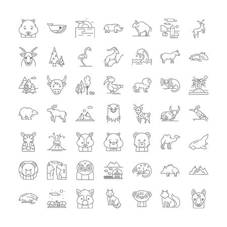Wild animals line icons, signs, symbols vector, linear illustration set