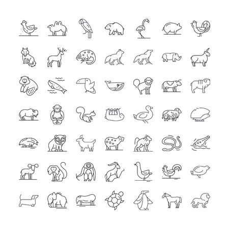 Wildlife animals line icons, signs, symbols vector, linear illustration set