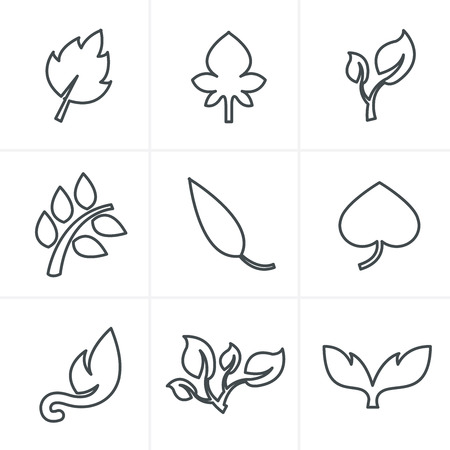 with sets of elements: Line Icons Style  leaf icon