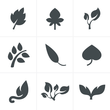 icon collection: leaf icon