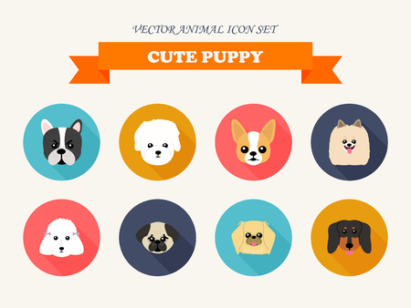 pekingese: Set of flat design compositions with cute dogs - vector set of icons and illustrations
