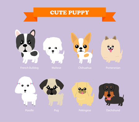 Set of flat design compositions with cute dogs - vector set of icons and illustrations
