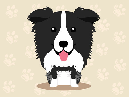 border collie: Cute dog  - vector set of  illustrations