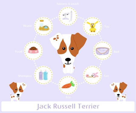 jack russell: Pet Supplies (jack russell terrier) infographic on warm background - vector set of icons and illustrations