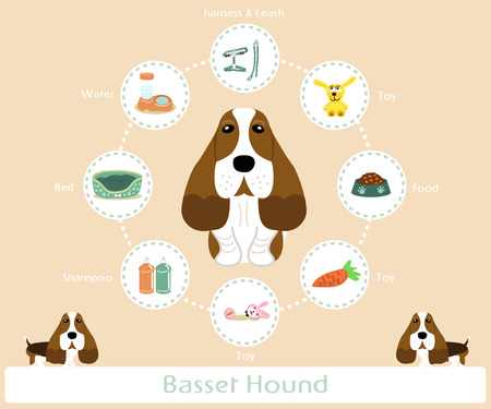 basset hound: Pet Supplies (basset hound) infographic on warm background - vector set of icons and illustrations Illustration