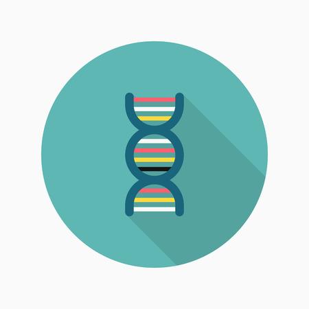 genome: Genome icon , Vector flat long shadow design. Illustration