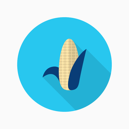 corncob: Corn  icon, Vector flat long shadow design.
