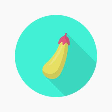 petiole: Eggplant  icon, Vector flat long shadow design.