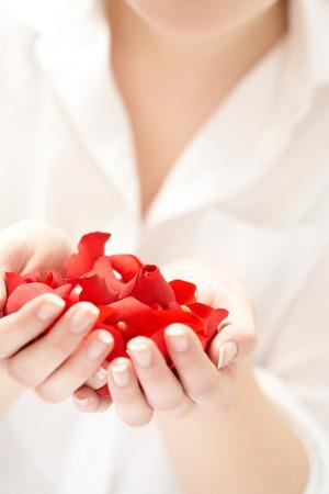sensory perception: Female hands holding red rose petals.