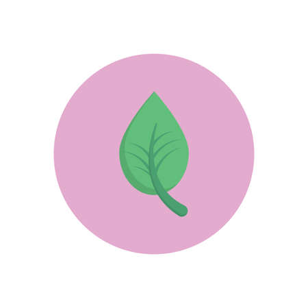 leaf vector flat colour icon
