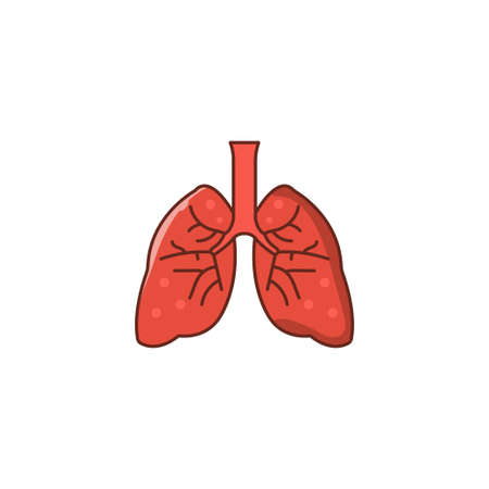 lung vector flat color icon
