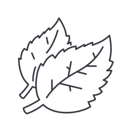 Cofee bean plants icon, linear isolated illustration, thin line vector, web design sign, outline concept symbol with editable stroke on white background. 矢量图像