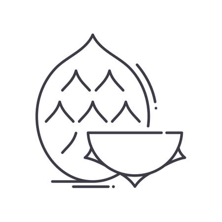 Dragonfruit icon, linear isolated illustration, thin line vector, web design sign, outline concept symbol with editable stroke on white background.