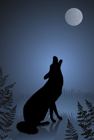 Wild wolf  coyote howling at the full moon Vector