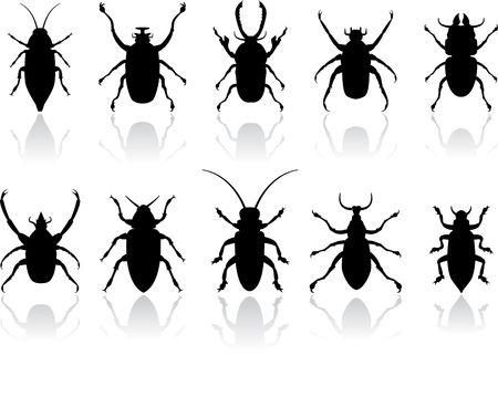 オリジナル イラスト: 昆虫のシルエットを設定 AI8 互換性 写真素材