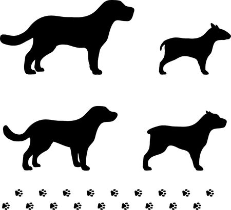 Original Illustration: four dog breeds with paw tracks AI8 compatible  Stock Photo