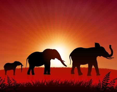 Original Illustration: elephants in the wild AI8 compatible  illustration