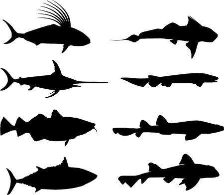 Original Illustration: Large fish and marine life silhouettes AI8 compatible  Stok Fotoğraf