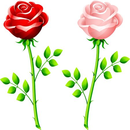 Original Illustration: realistic red and pink rose on a stem AI8 compatible